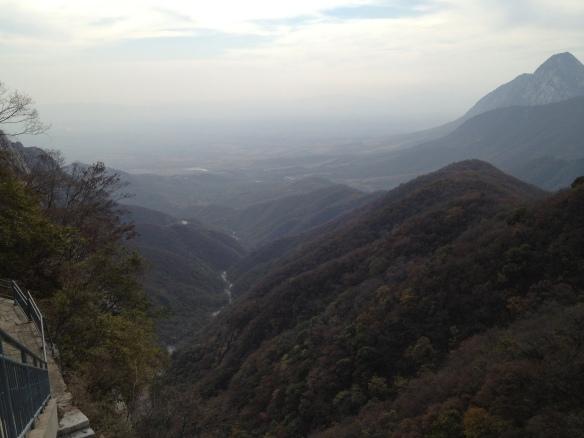 Zen view