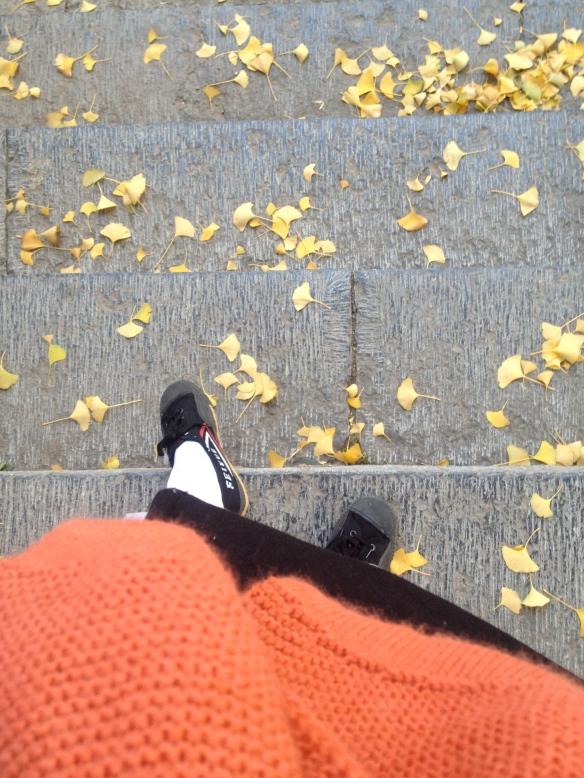 my Kung Fu shoes & socks