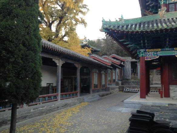 training courtyard